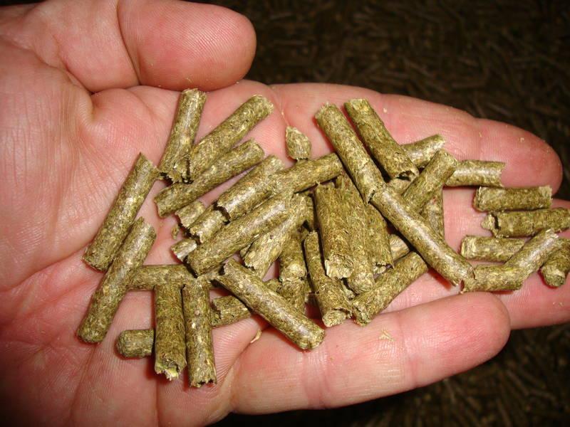 how to make lucerne pellets