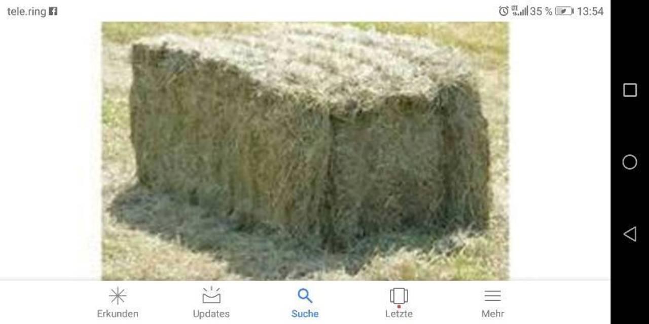 Super Heu kaufen und verkaufen - auf www.landwirt.com #YF_25