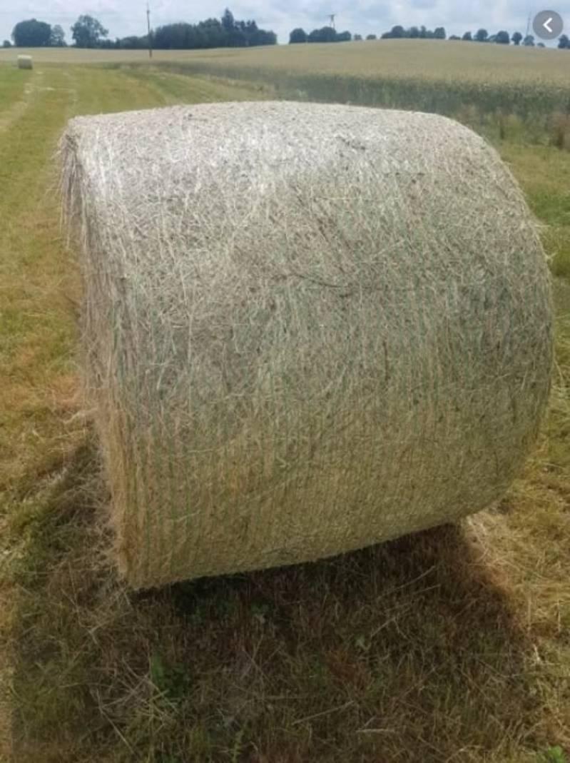 Berühmt Heu kaufen und verkaufen - auf www.landwirt.com @QT_62