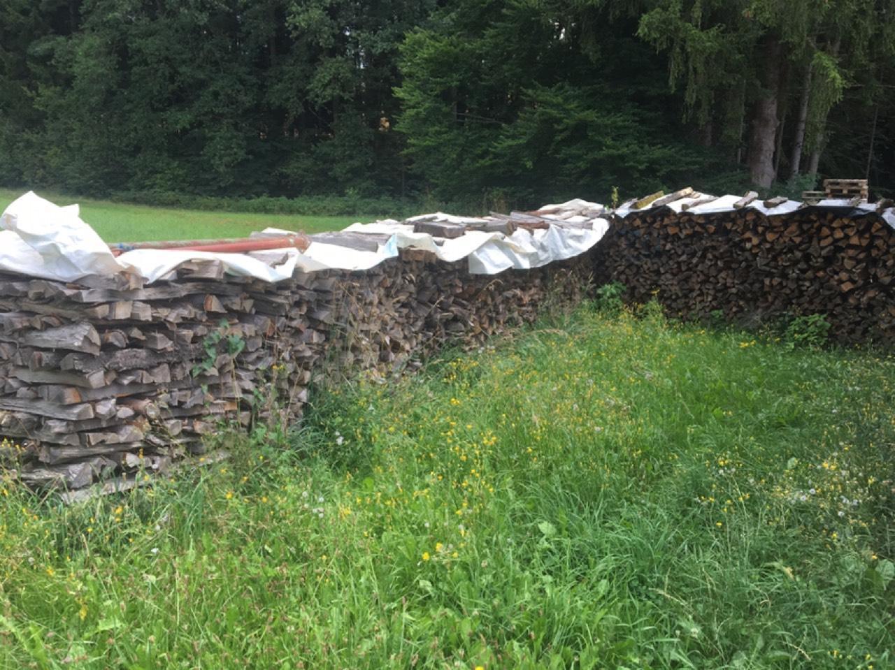 Außergewöhnlich Brennholz günstig kaufen - auf www.landwirt.com #WF_34