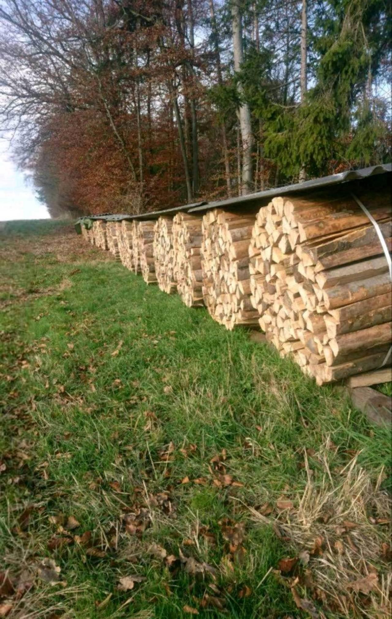 Top Brennholz günstig kaufen - auf www.landwirt.com RQ14