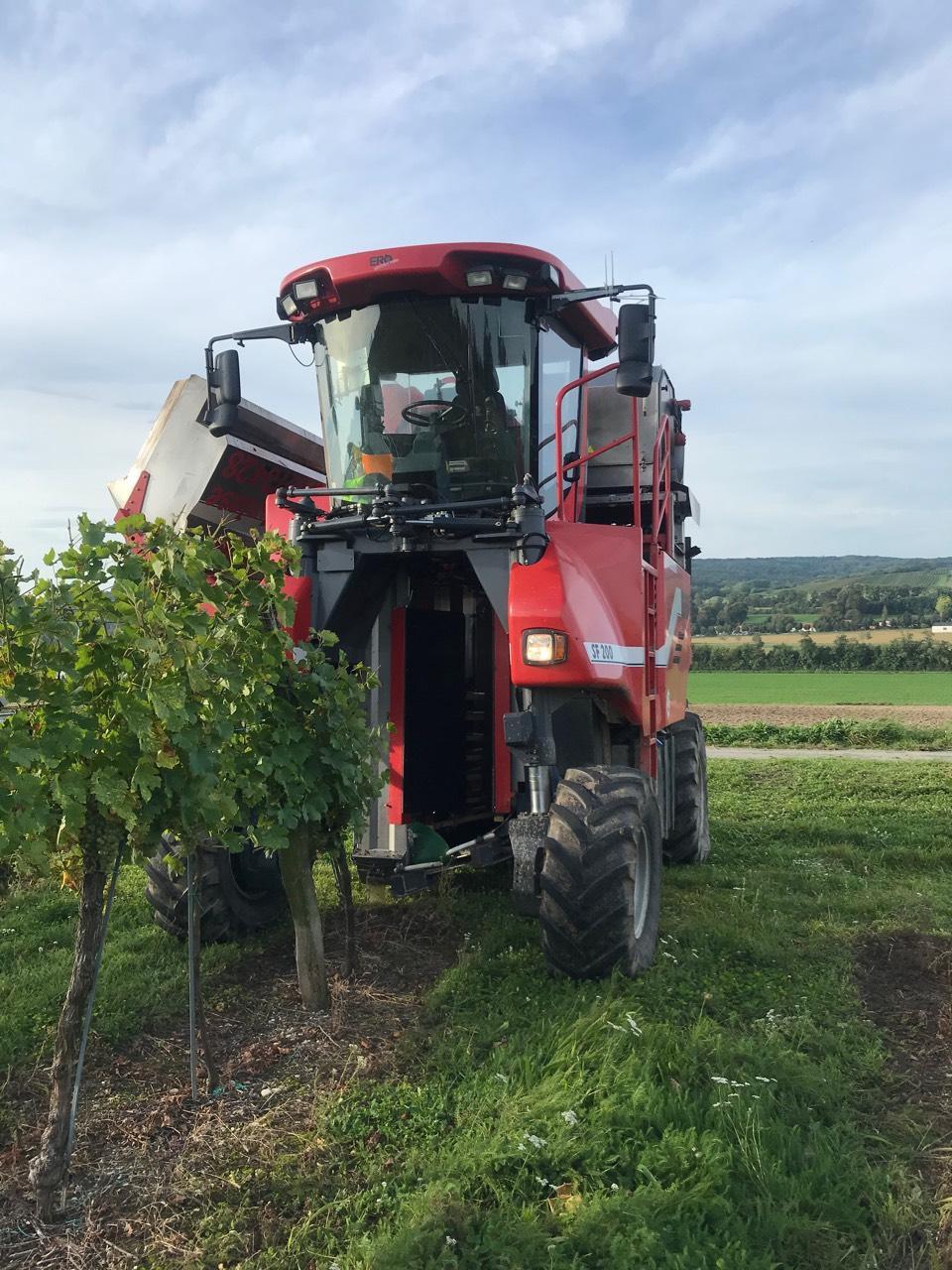 Weinbaumaschinen: ERO SF 200 gebraucht kaufen - Landwirt.com