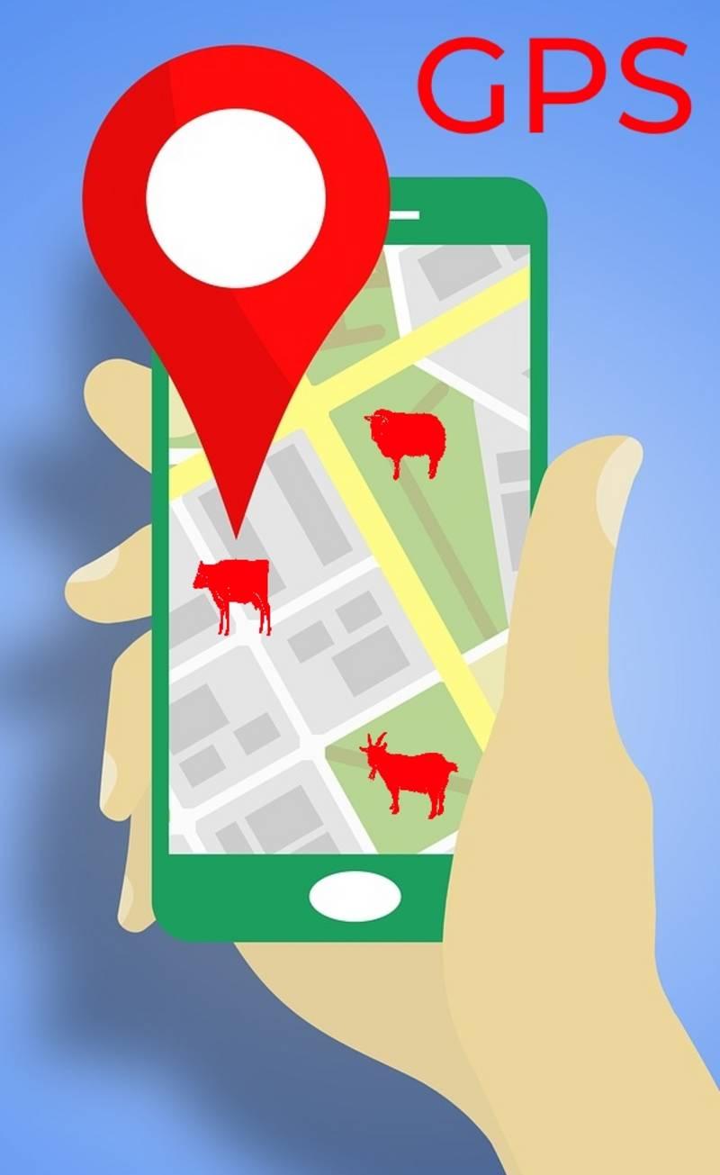 GPS Ortung für Ihre Tiere, das perfekte Weihnachtsgeschenk!